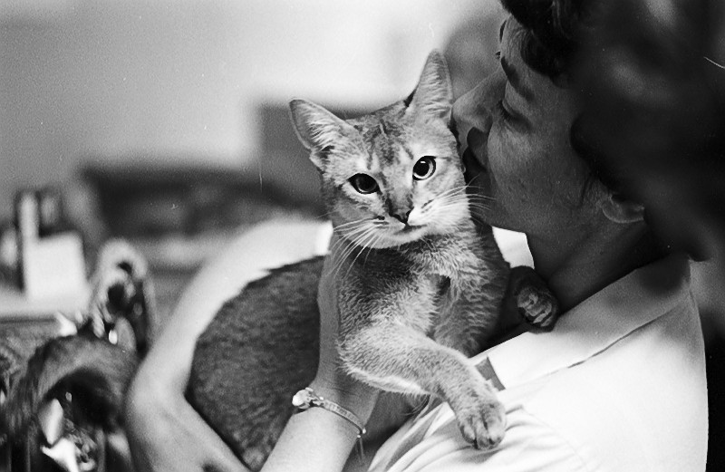 Woman embracing her cat at the 1967 Thorncliffe Cat Show. Image no. ASC010071.